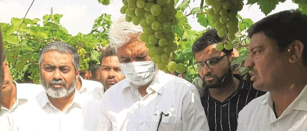 Above all to the farmers Let's help:  Bhuse