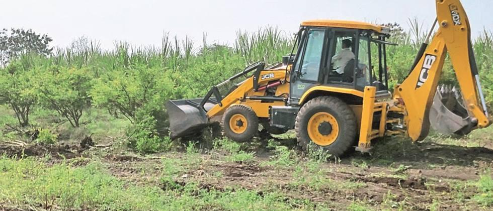 A farmer from Yeola planted a JCB on a pomegranate orchard