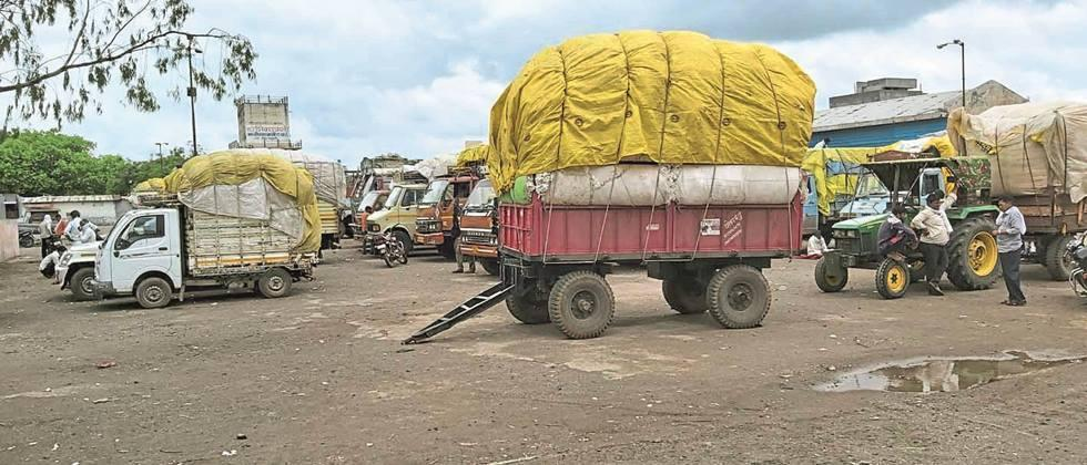 Rains in Parbhani, Nanded and Hingoli hamper cotton procurement