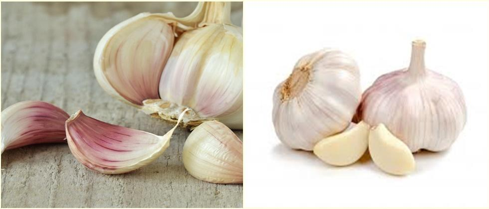 value added products of Garlic