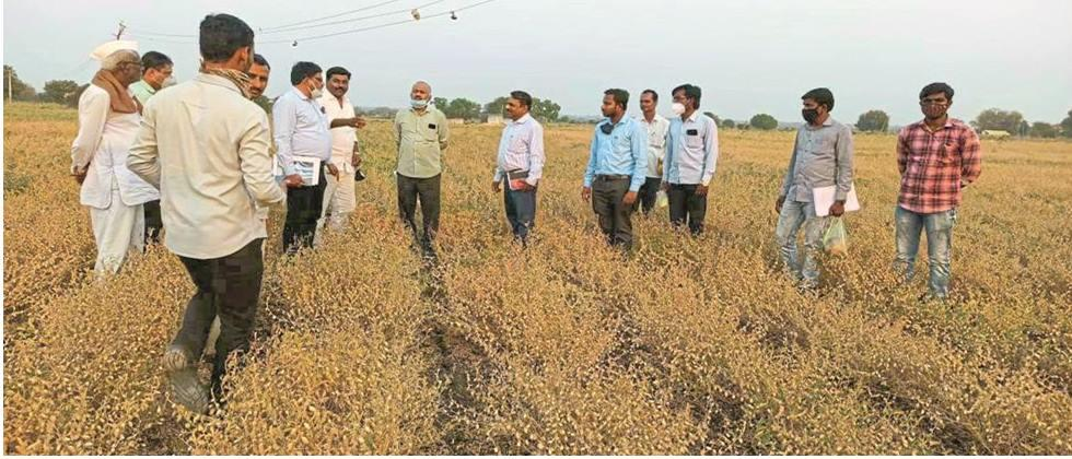 At the time of sowing soybeans in kharif Use pair line method: Jadhav