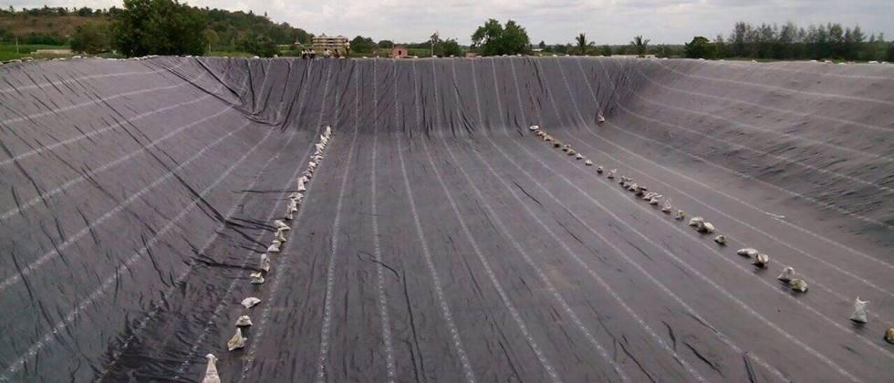 'Rohyo' farms include plastic lining