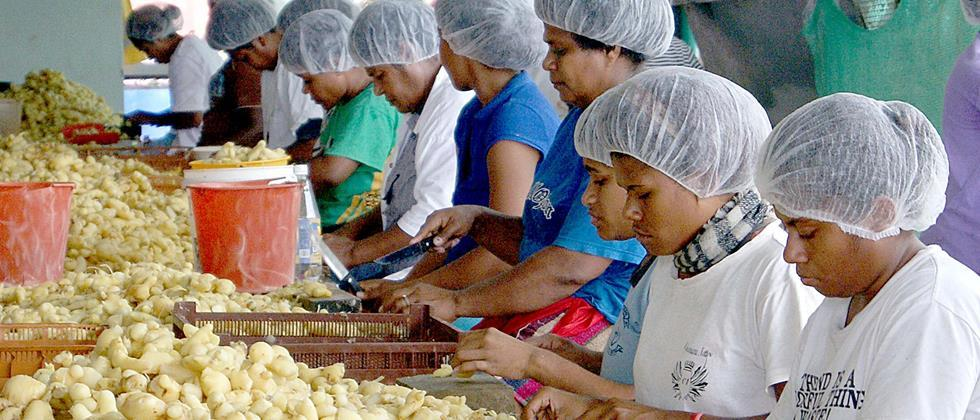To the micro food processing industry Will bring in the organized field