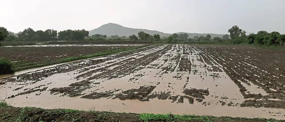 received less rainfall in 69 circles in June and July in  Nanded, Parbhani, Hingoli