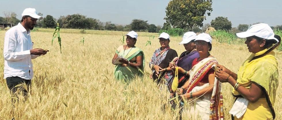 Women in Clumber Response to the farm school