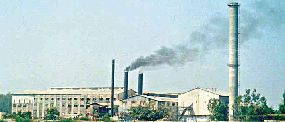 Sugar mills should take responsibility for the workers