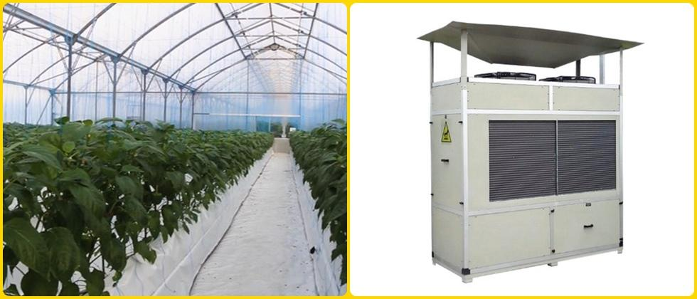 Dehumidification offers a lot of benefits for greenhouse growers