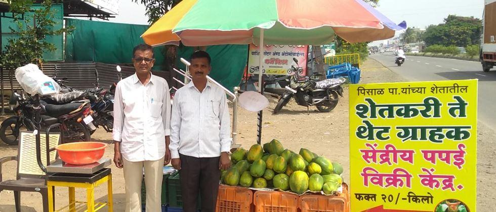 special success story,  Double profit gained from direct sale of fruits