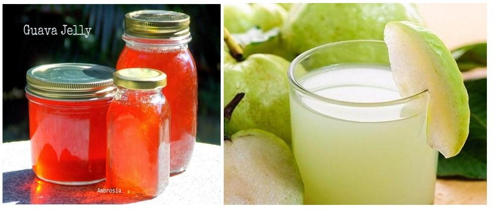 processed food products made from guava fruit