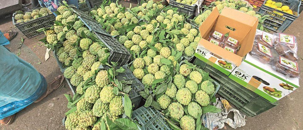 Vegetable inflows smooth in Pune; Rate fixed