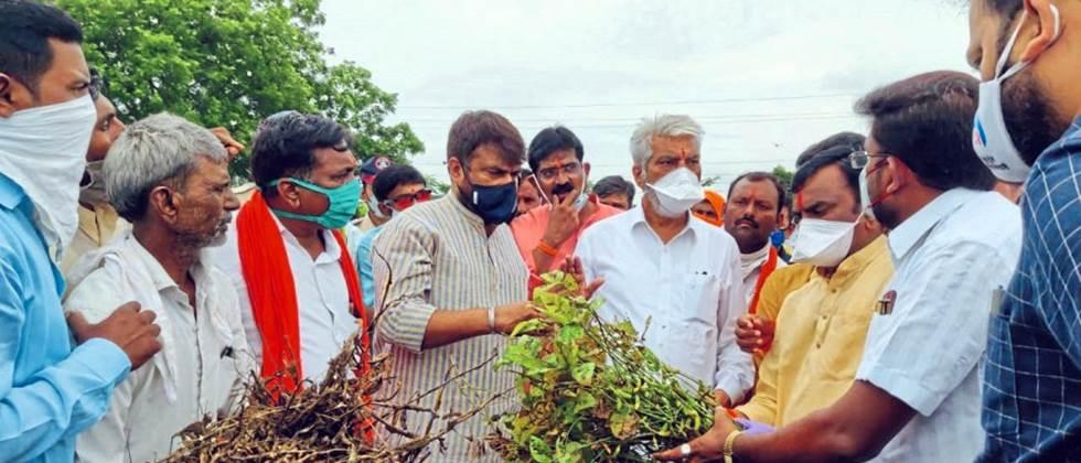 agriculture minister take a review of damaged crops