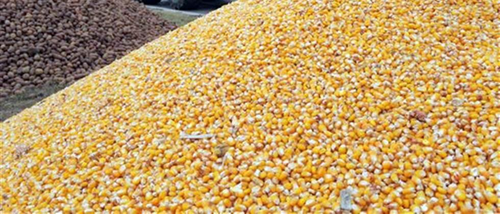 First complaint of fraud in purchase of agricultural commodities