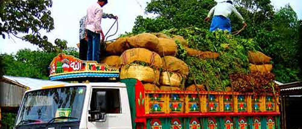 Farmers groups should get subsidy for agricultural transport scheme