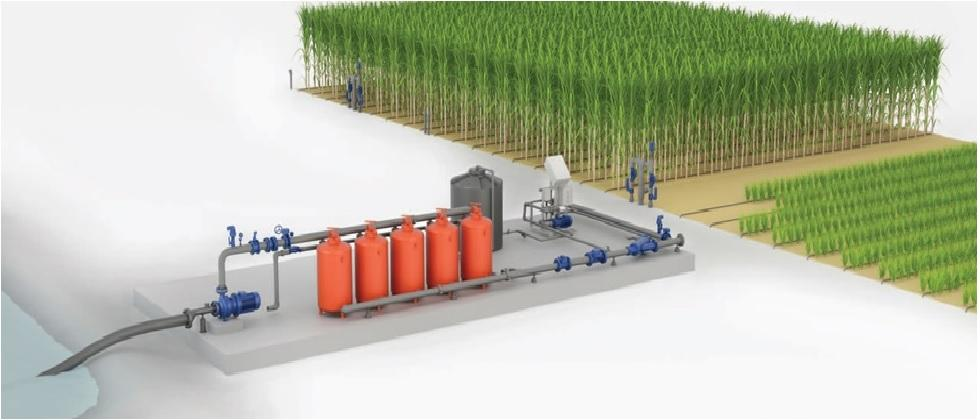Drip Irrigation system for sugarcane drop