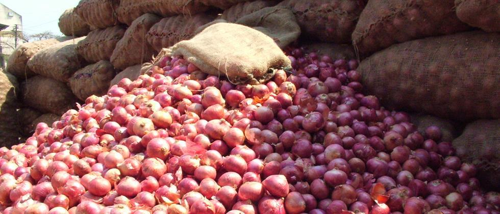 Onion received highest rate in twenty years in city district