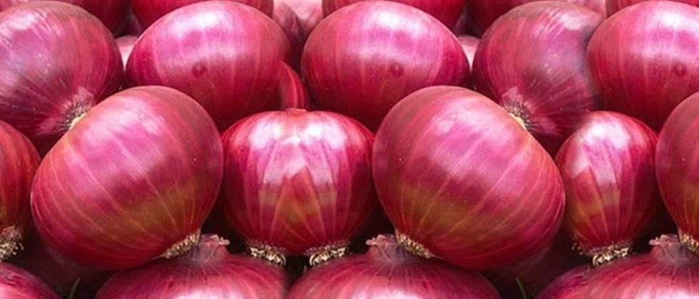 Late kharif onions survive in the market