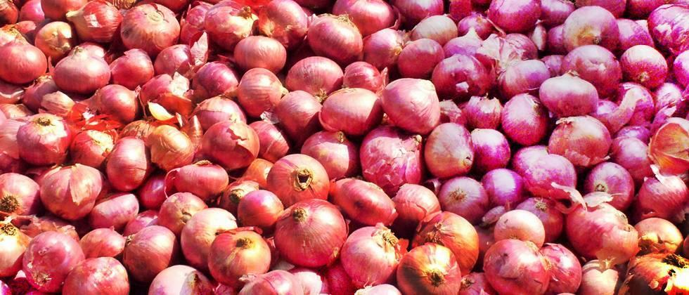 market committees doing planning for start onion auction