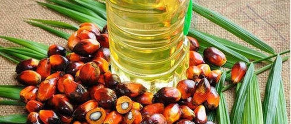 Sri Lanka launches 'surgical strike' on palm oil imports