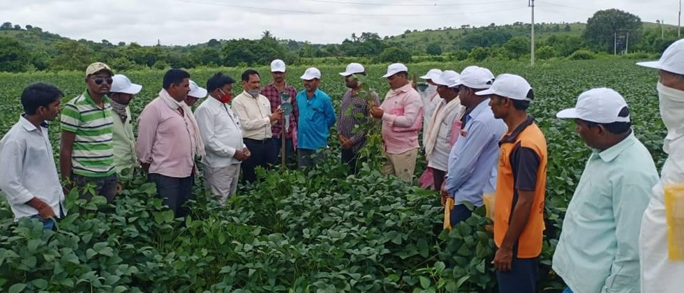 Farm school on soybean crop at Pandhari