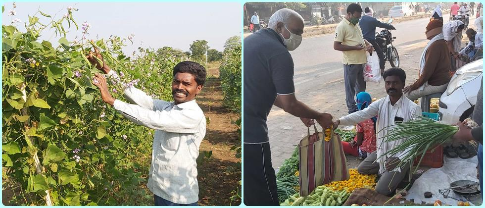 Vegetable crops gives sustainable income