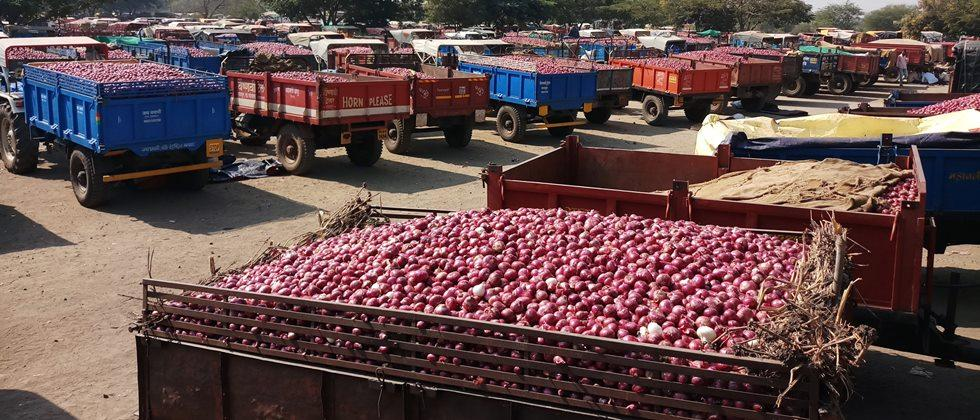 Onion auction again in an open manner