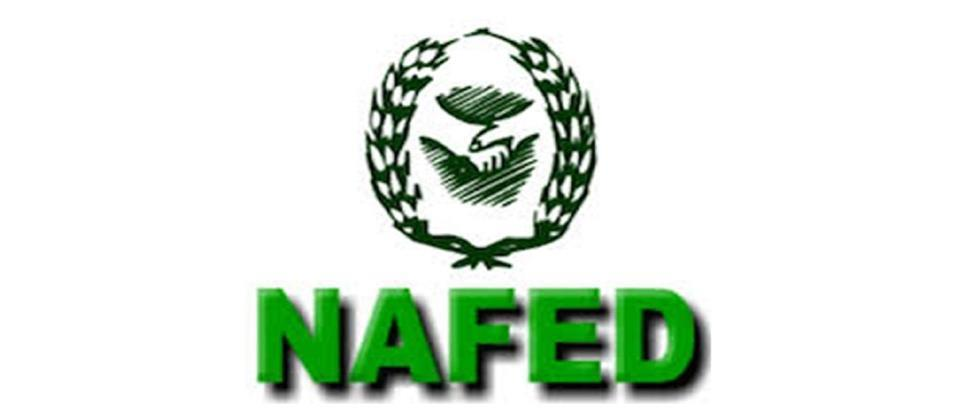 Onions from farmers should be procured by Nafed