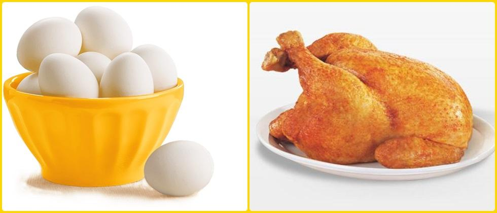 health benefits of chicken and eggs