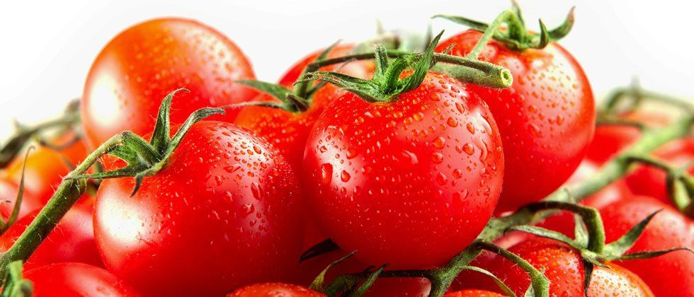 value added products of tomatoes