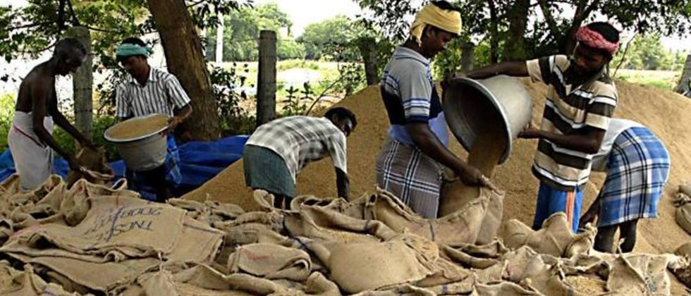 In Telangana, rice will be procured directly from the village