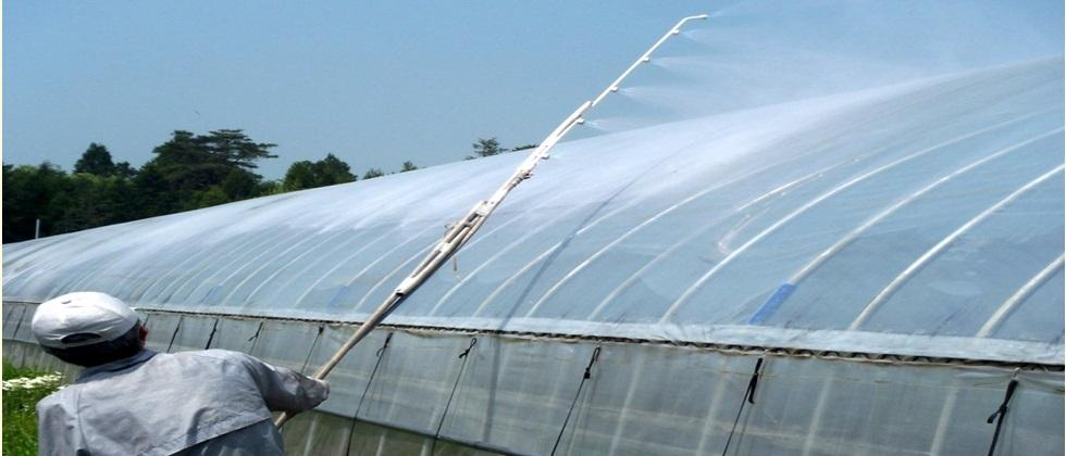 benefits of white color spraying on greenhouse