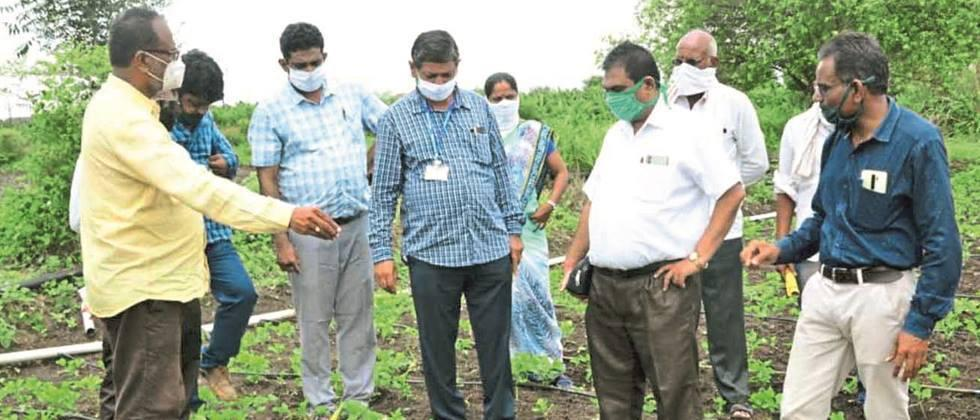 Use chemical weed controls only when absolutely necessary: ​​Dr. Devasarkar