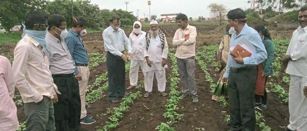 Use BBF technique for sowing: Secretary Dawle