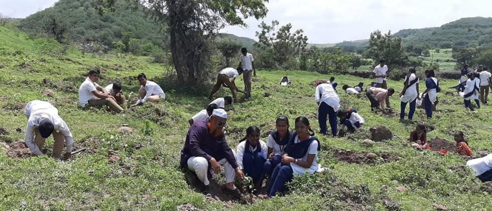 Student participation in tree plantation.
