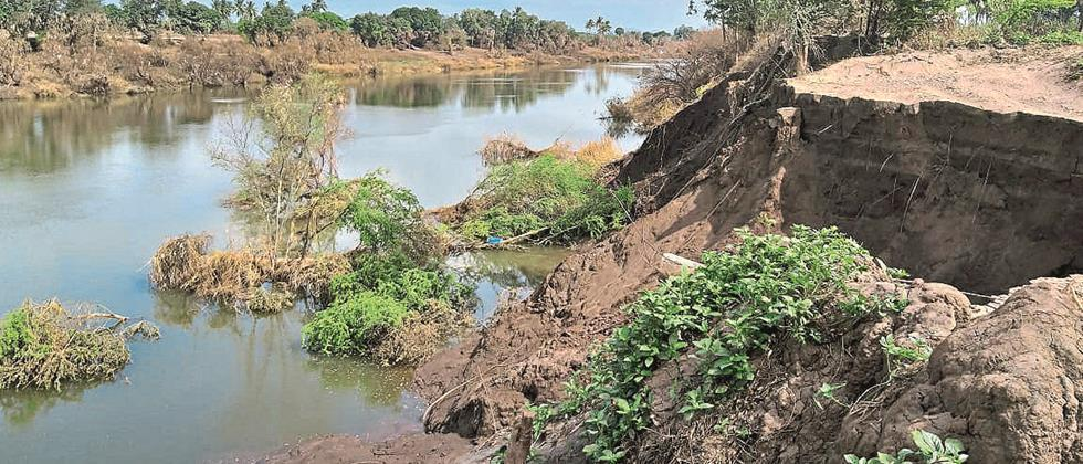 In Sangli district, agricultural pumps were carried on the banks of the river Krishna