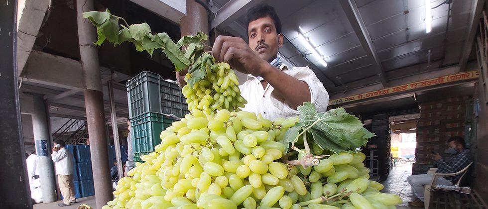 In Pune, vegetable imports declined; Rate fixed