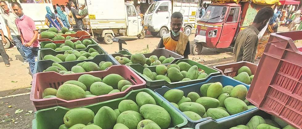 Prices of most vegetables in Pune are stable
