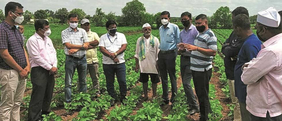 Sowing demonstration using 'BBF' technology in Sinnar taluka