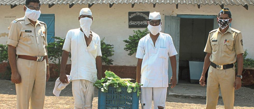 Detainers grow vegetable productions