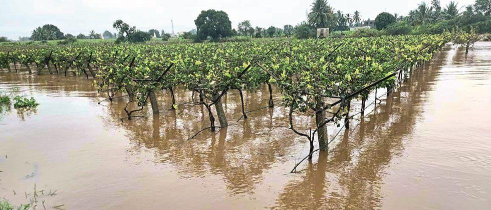 Farmers in Kavathemahankal waiting for help
