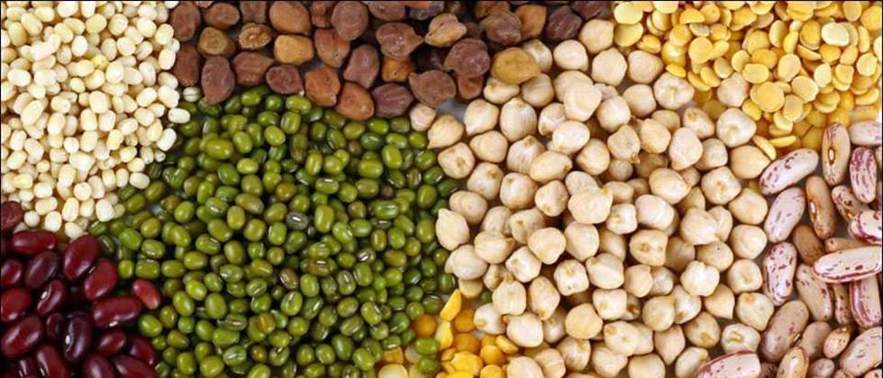 Two and a half million tonnes of cereals stuck into ports