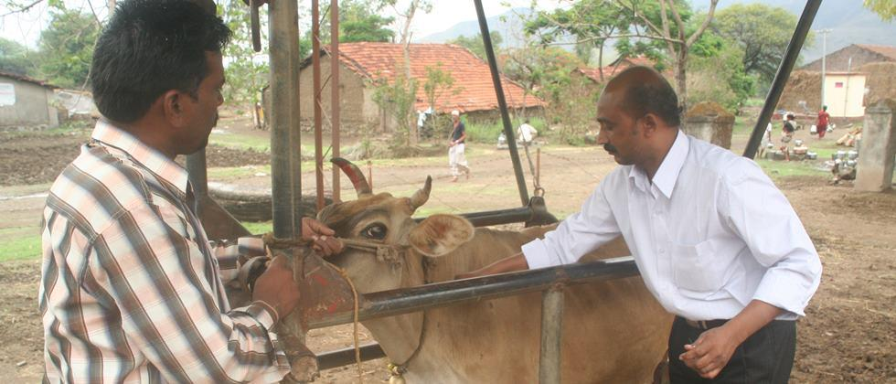 Improved environmental protection for animal, human health