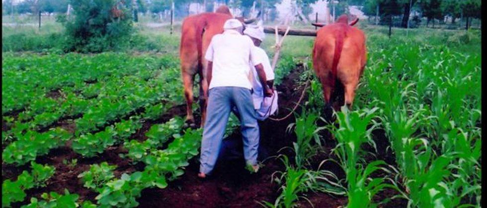 Inland water conservation in dryland agriculture
