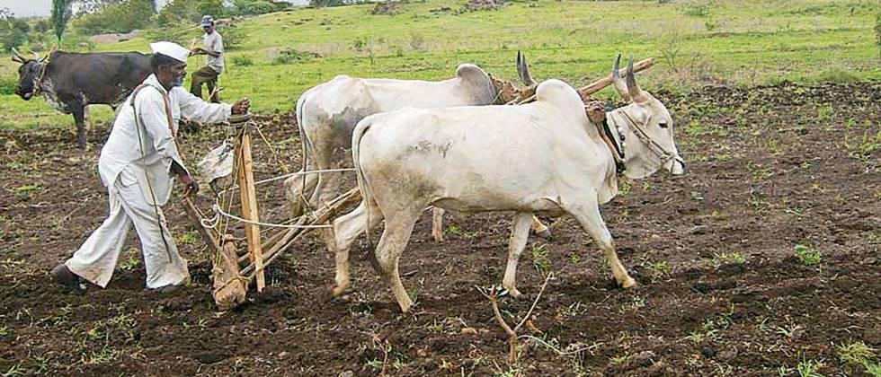Exemption for pre-monsoon farming works