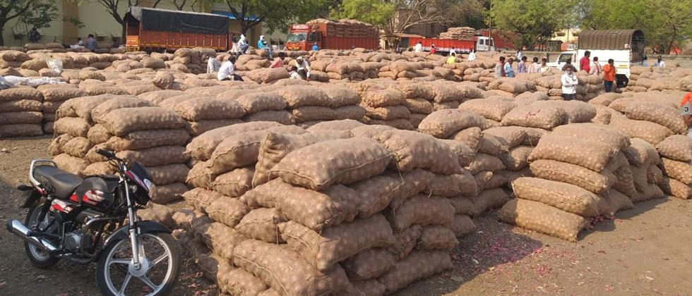 500 vehicle Onion incoming in Solapur