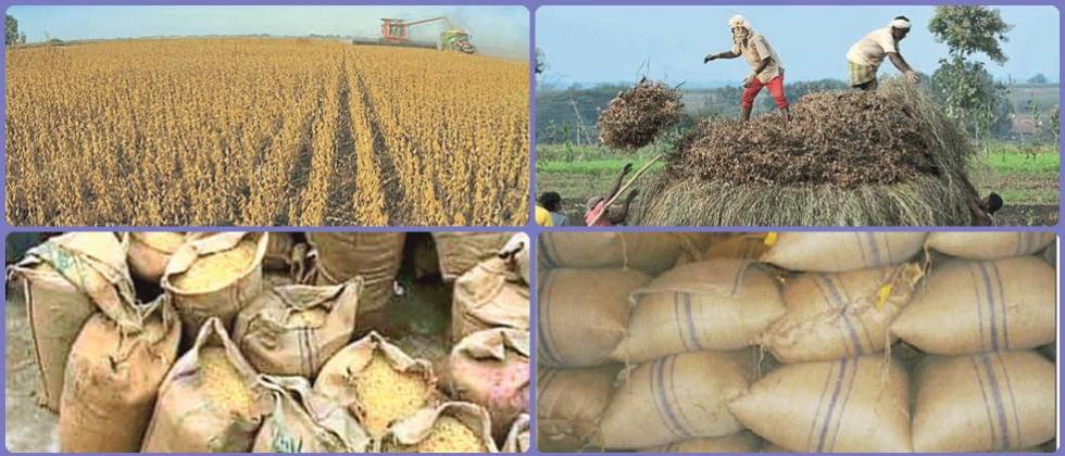 Handling, storage of soybeans after harvest