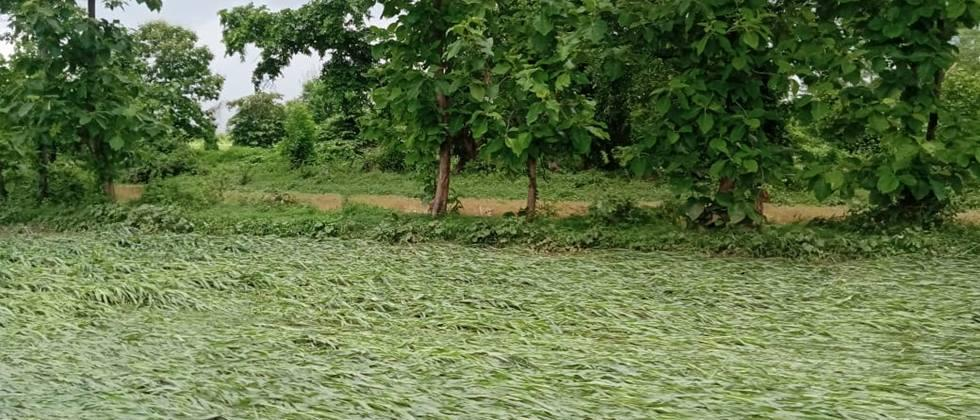 Water seeped into seven villages in Wadaki area