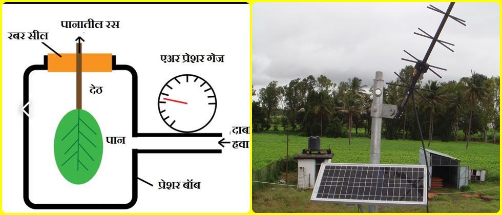 Crop micro climate measuring instruments