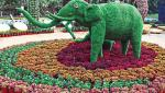create flower park in nashik