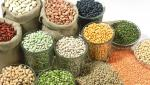 The need for cereal varieties according to climate change