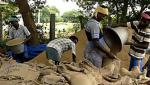 Bhandara district got tired of missing 111crores of paddy